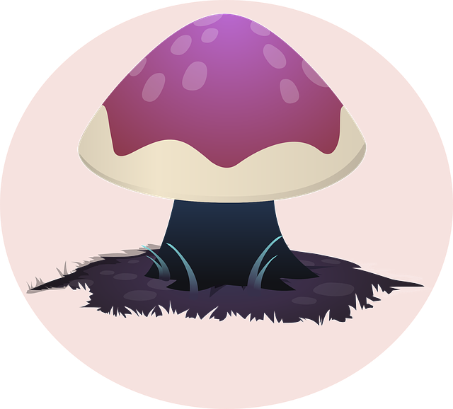 mushroom pink nature forest fungus fungi toxic poisonous purple magic psychedelic toxic psychedelic psychedelic psychedelic psychedelic psychedelic